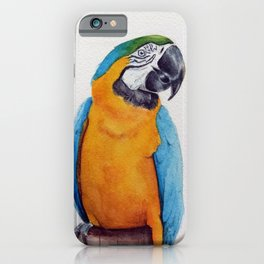 Macaw II iPhone Case