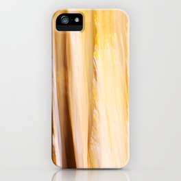 Indian Summer 3 iPhone Case