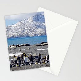 King Penguins and Fur Seals Stationery Cards