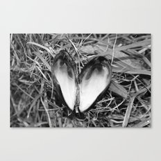 Loveheart Mussels Canvas Print