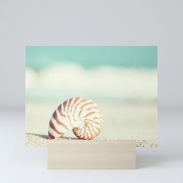 Seashell Beach Photography, Shell Coastal Ocean, Teal Turquoise Aqua Art, Nautilus Seaside Photo Mini Art Print