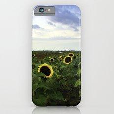 Sunflower Row iPhone 6s Slim Case