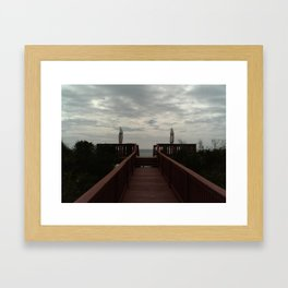 FL 013 Framed Art Print