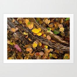 Log & Fall Leaves Art Print