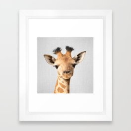 Baby Giraffe - Colorful Framed Art Print