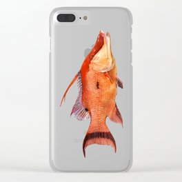 Hogfish Clear iPhone Case