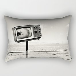 Desert TV Photograph Rectangular Pillow