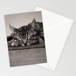 Sleepy Kitty Stationery Cards