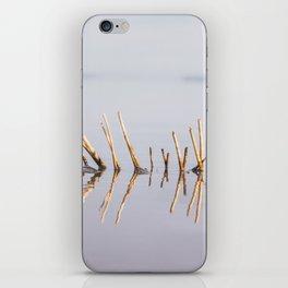 Sunny Twigs iPhone Skin
