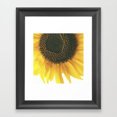 FLOWER 045 Framed Art Print