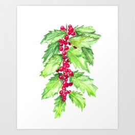 Holly Branch Art, Christmas Painting, Holiday Art, Birds and Berry Studio Art Print