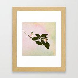 Watercolor Hummingbirds on a Branch Framed Art Print