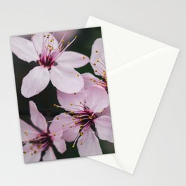 Pink flower 2 Stationery Cards