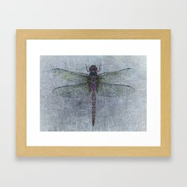 Dragonfly on blue stone and metal background Framed Art Print