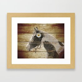 Daisy Flower on Rustic Brown Cream Horse Country Barn Art A166 Framed Art Print