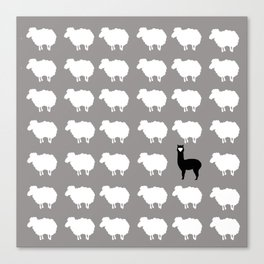 Don't be a sheep, Be a Llama Canvas Print
