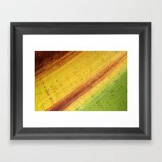 Tropical Textures #3 Framed Art Print