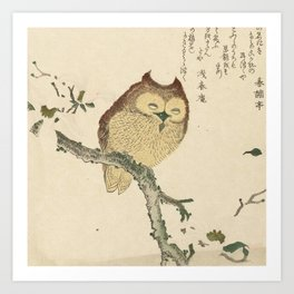 Japanese Woodcut: Owl on a Magnolia Branch Art Print