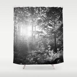 Sundown in the Forest Shower Curtain