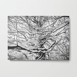 Winter Wonderland 3 Metal Print