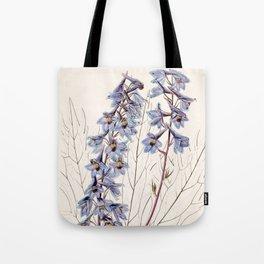 Delphinium elatum palmatifidum/Delphinium intermedium palmatifidum Tote Bag