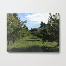 House in the Orchards Metal Print