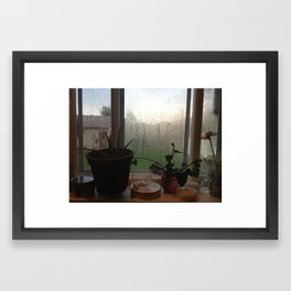 #35 Framed Art Print