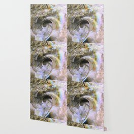 Abalone Portrait Wallpaper