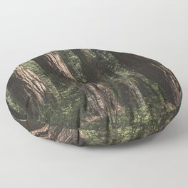 Sunlit California Redwood Forests Floor Pillow