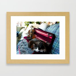 The Cat and the Fiddle (Gracie Queen of Chicago Collection) Framed Art Print