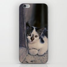 fugue III iPhone & iPod Skin