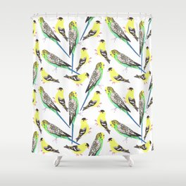 Budgies and american goldfinches Shower Curtain