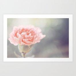 Carnation in Pink Art Print