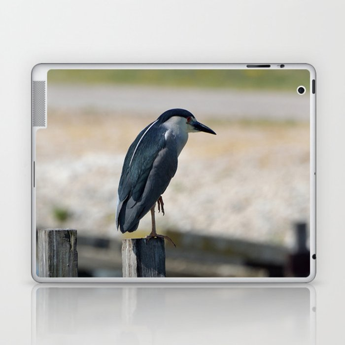 Bird Laptop & iPad Skin