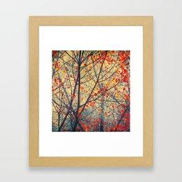 trees VIII Framed Art Print