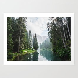 Forest Reflection in Italy Art Print