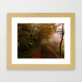 Hiking Trail 1 Framed Art Print