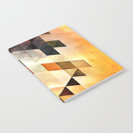 bryyx pyynx Notebook