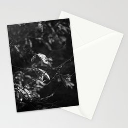 Dead Things Fall Stationery Cards