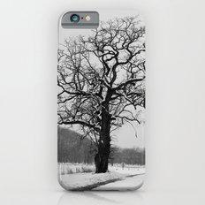 Winter Oak iPhone 6s Slim Case