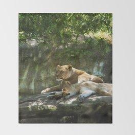 Portland Lioness Throw Blanket