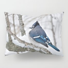 Winter's Cold (American Blue Jay) Pillow Sham