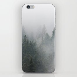 Long Days Ahead - Nature Photography iPhone Skin