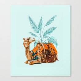 Camel Ride Canvas Print