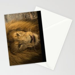 Lion - Time To Eat Stationery Cards