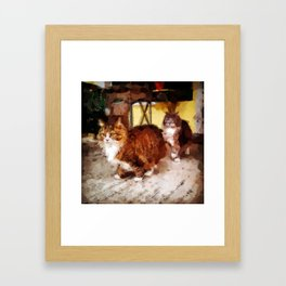 Max and Maxine On Guard Framed Art Print