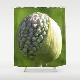 Erwin Shower Curtain