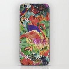 TROPICAL LOVE iPhone & iPod Skin