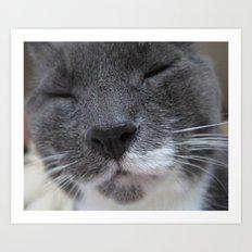 Cutest Kitty-cat ever! Art Print