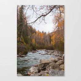 Alaskan Fall Canvas Print
